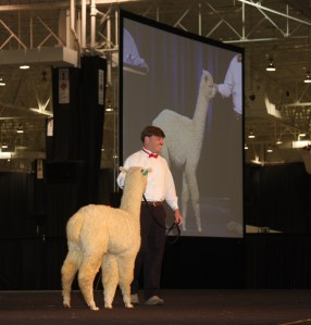 Tripp Forstner on stage at the AOBA National Auction